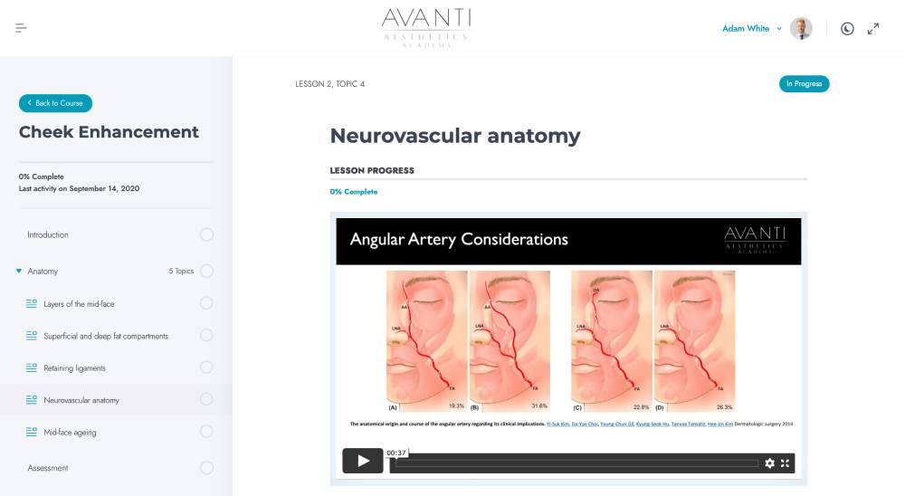 Neurovascular anatomy – Avanti Aesthetics Academy_ - avantiaestheticsacademy